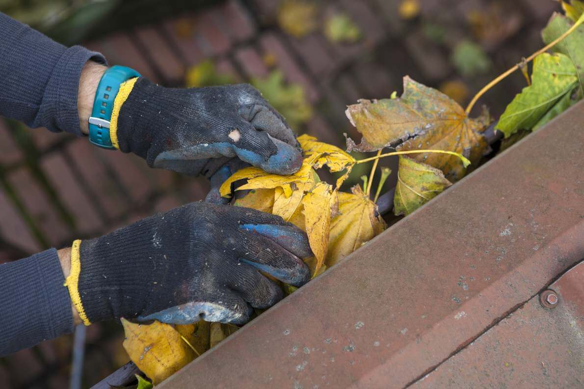 8 Insider Tips For Gutter Cleaning