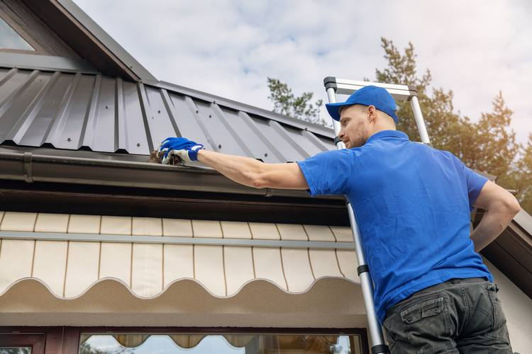 Gutter Cleaning In Bellevue