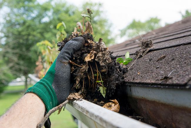How Clean Gutters Protect Your Home In Any Season
