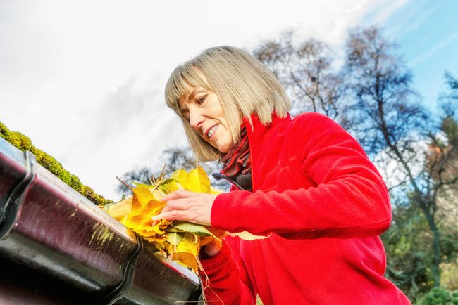 3 Tips To Clean Gutters Safely