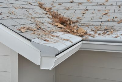 Gutter Leaf Clogged Cleaning